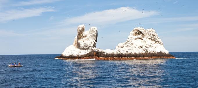 skiff au volant de roca partida, couvert d'oiseaux et de guano