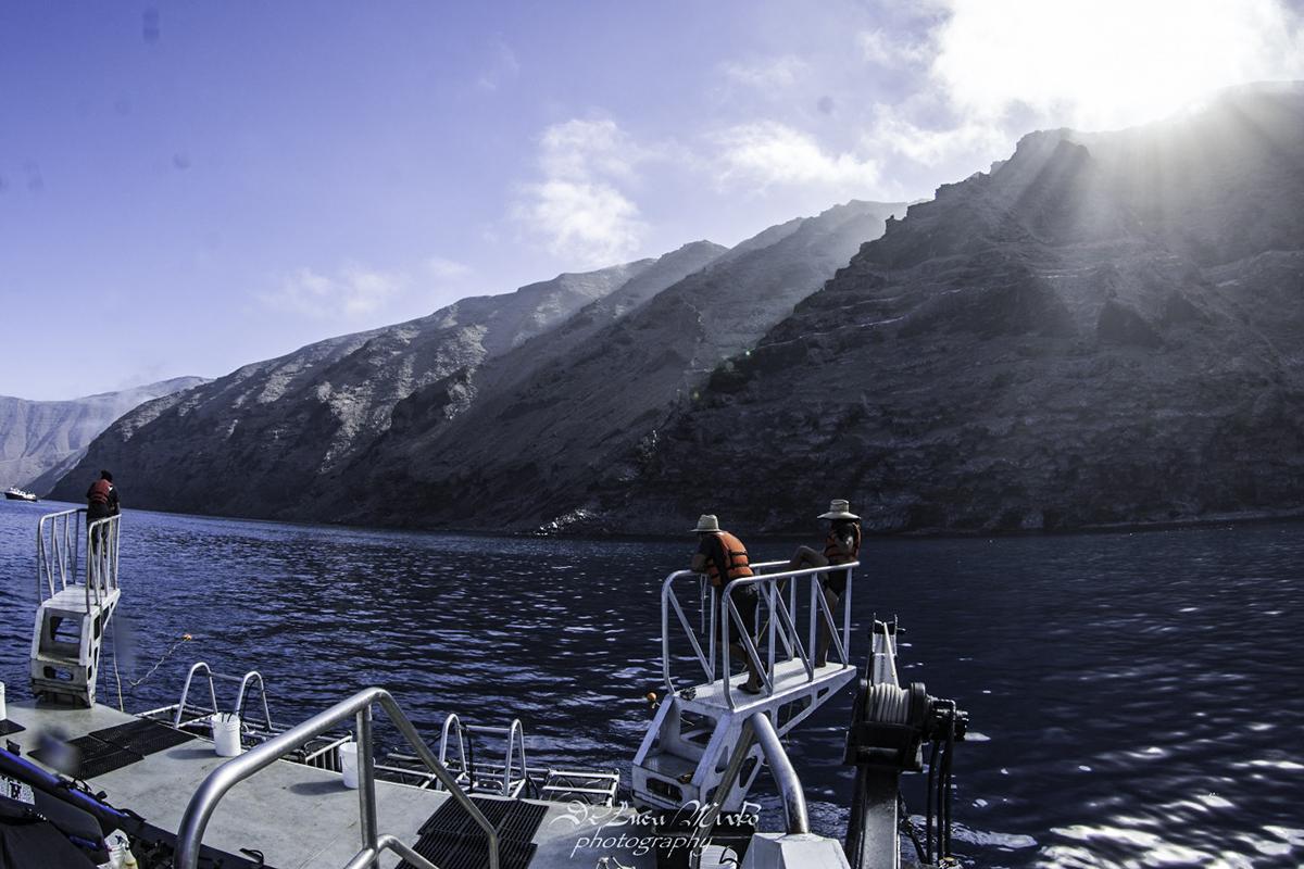 Wrangling off the Nautilus, Photo by Divemaster Mirko