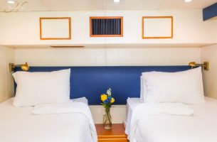 Swell suite alternate beds