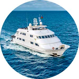 Nautilus Liveaboards - Liveaboard Diving in Mexico