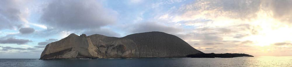The divers' favourite, San Benedicto on the shark highway